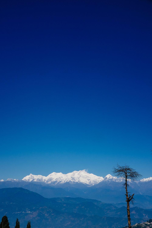 INDI4636.jpg