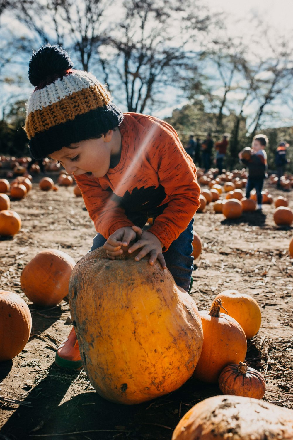 Pumpkin picking with Jesse, October 2018 - 29.jpg