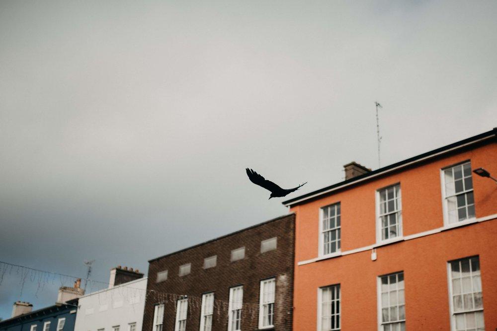 Cork for blog - 73.jpg