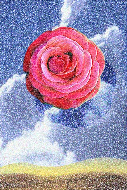 Rose in Landscape, 2004  Digital Painting