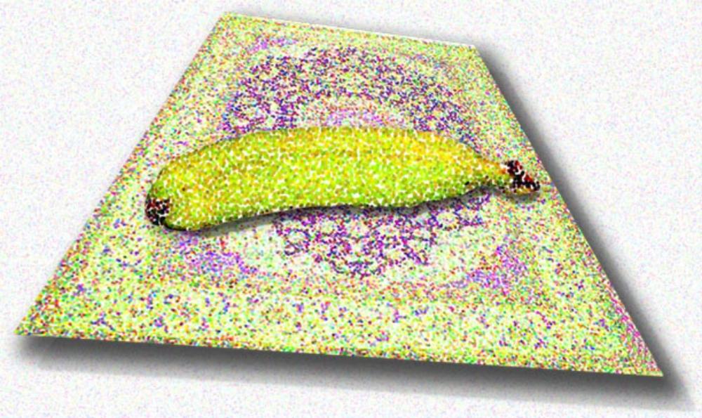 Banana on Flying Carpet, 2002  Digital Painting