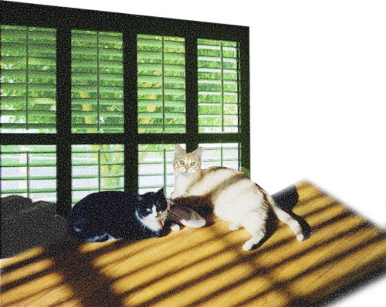 Chipper and Sunny in Front of Window, 2008  Digital Painting