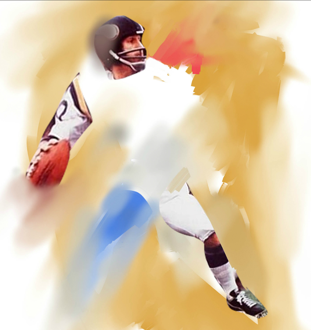 Fran Tarkenton, 2009  Football