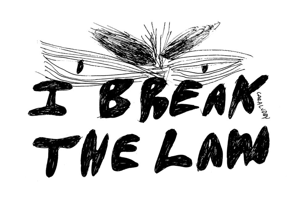 breaklawweb.jpg