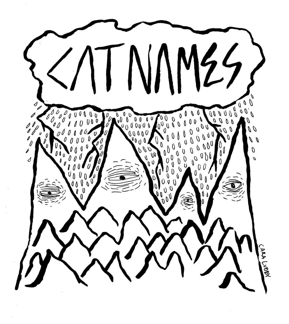 catnamesdesign.jpg