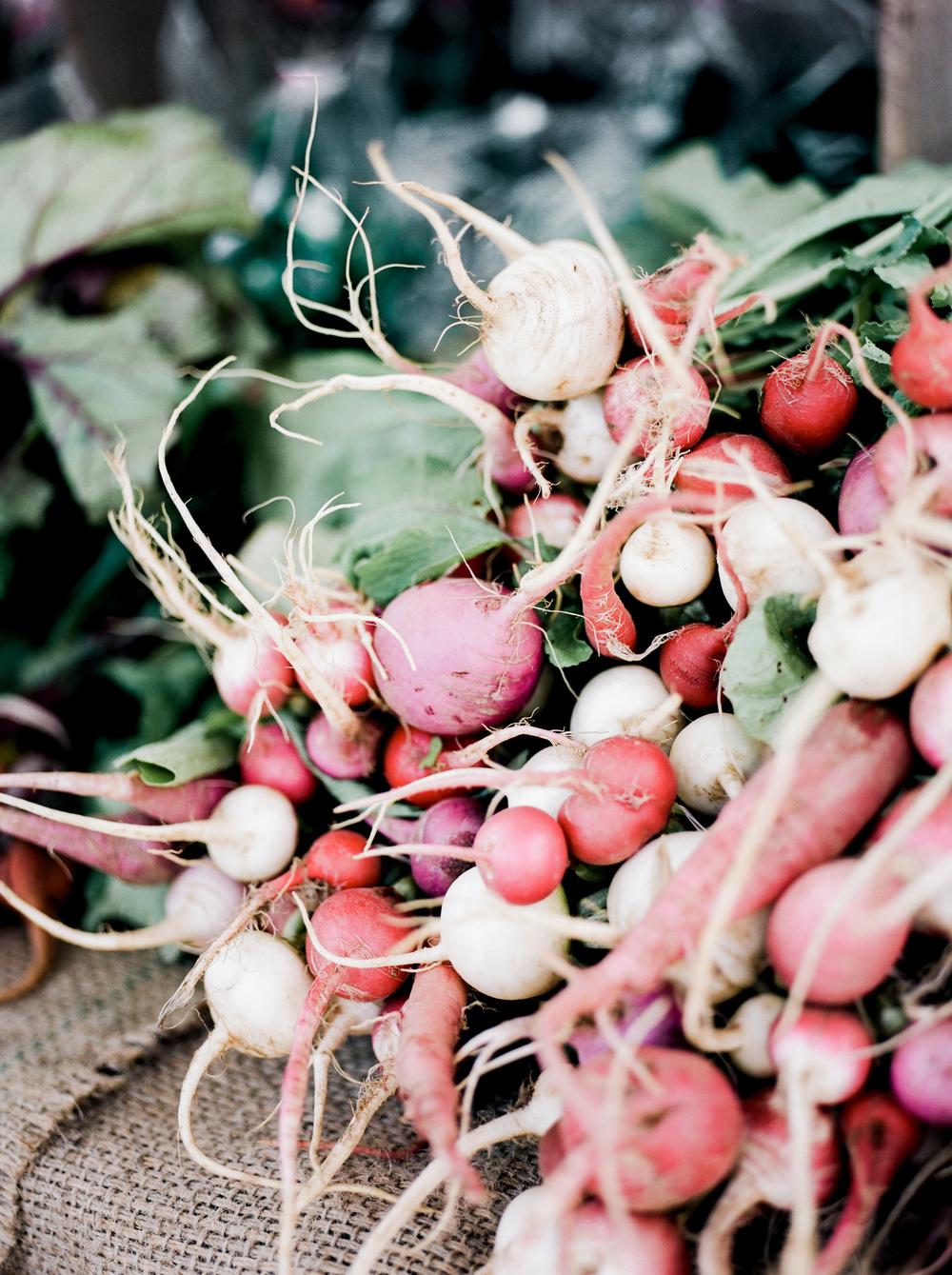 brevard market 3 sarah ingram