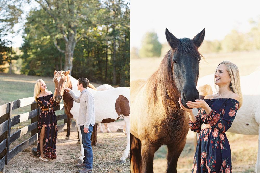 horses north georgia engagement session photographer film