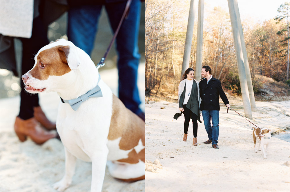 dog engagement session film photographer Georgia