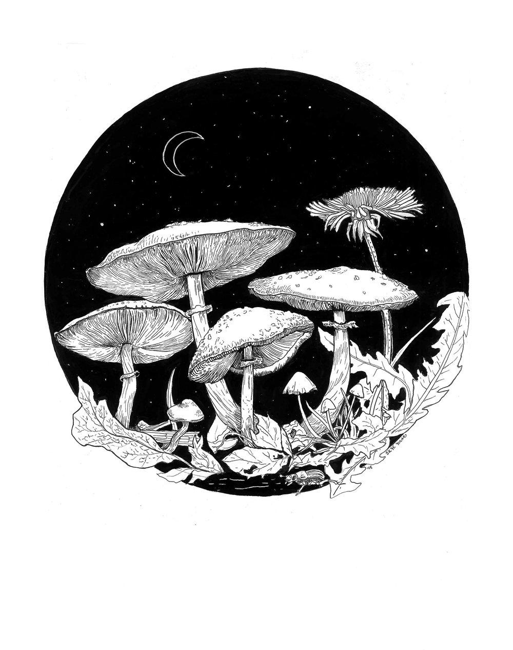 MushroomBouquet_Scan.jpg