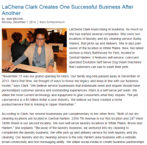 """LaChena Clark Creates One Successful Business After Another"" - The Network Journal - 12/1/2014"