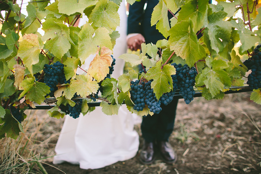 Maysara-Winery-Wedding-105