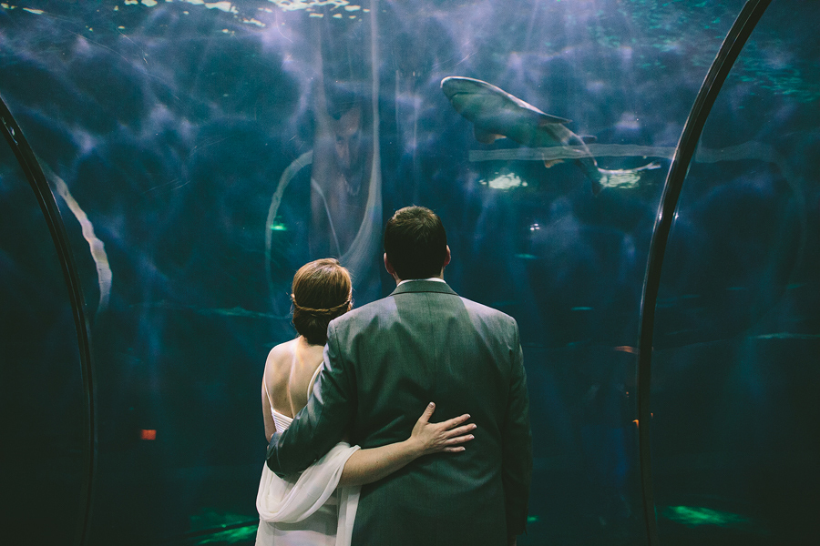 The-Oregon-Coast-Aquarium-Wedding-14.jpg