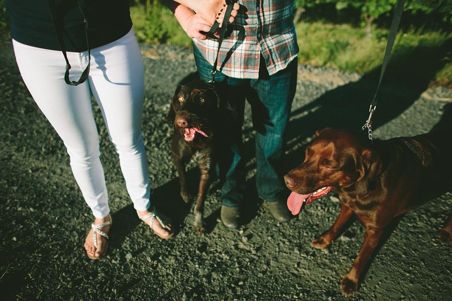 Dundee-Oregon-Engagement-Photographs-4.jpg