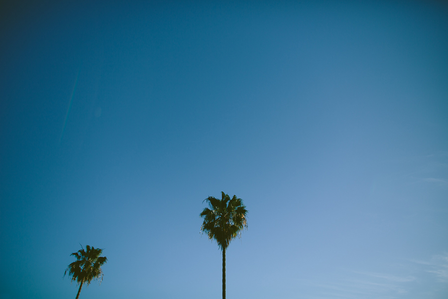 Santa-Monica-Pier-Engagement-Photographs-10.jpg