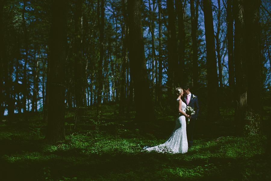 Vista-Hills-Vineyard-Wedding-1.jpg