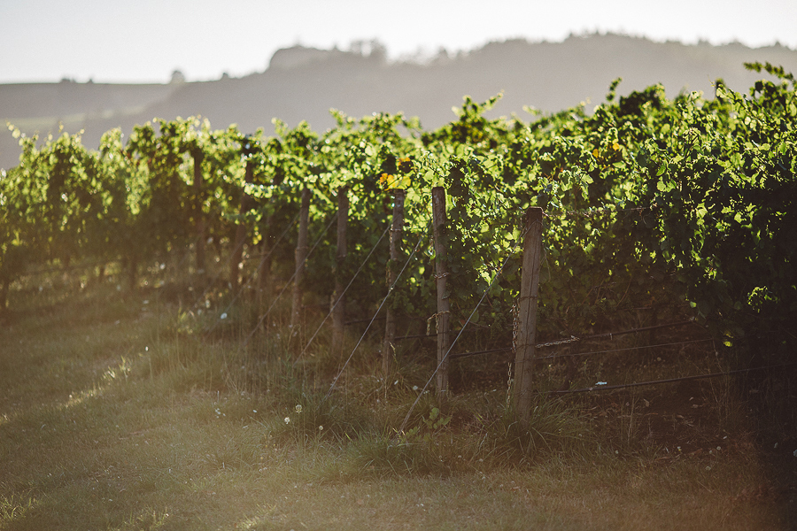 Maysara-Winery-Wedding-Photographs-84.jpg