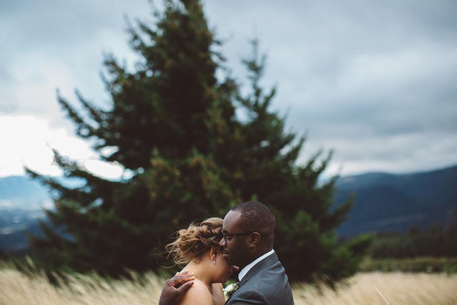 Gorge-Crest-Vineyards-Wedding-Photographs-62.jpg
