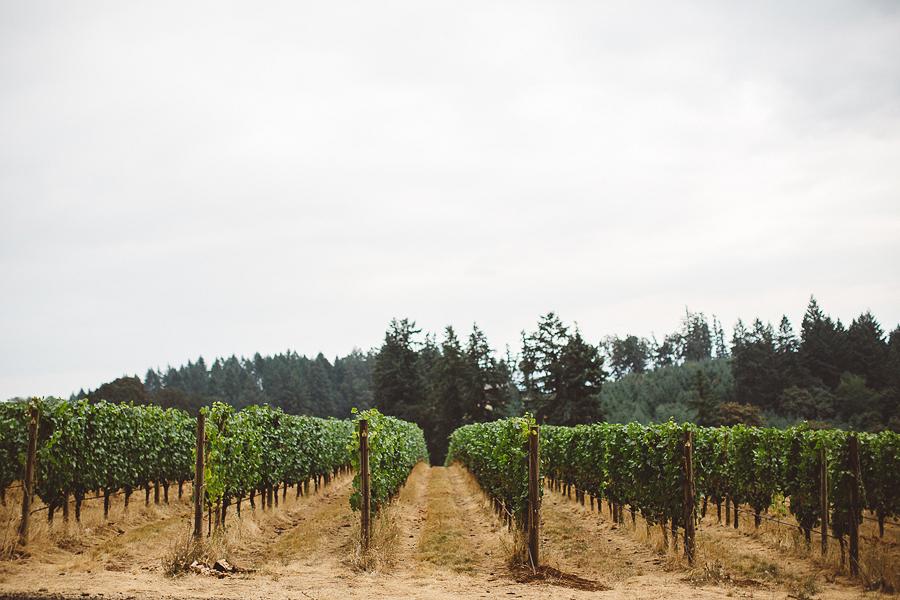 Vista-Hills-Vineyard-Wedding-Photos-51.jpg