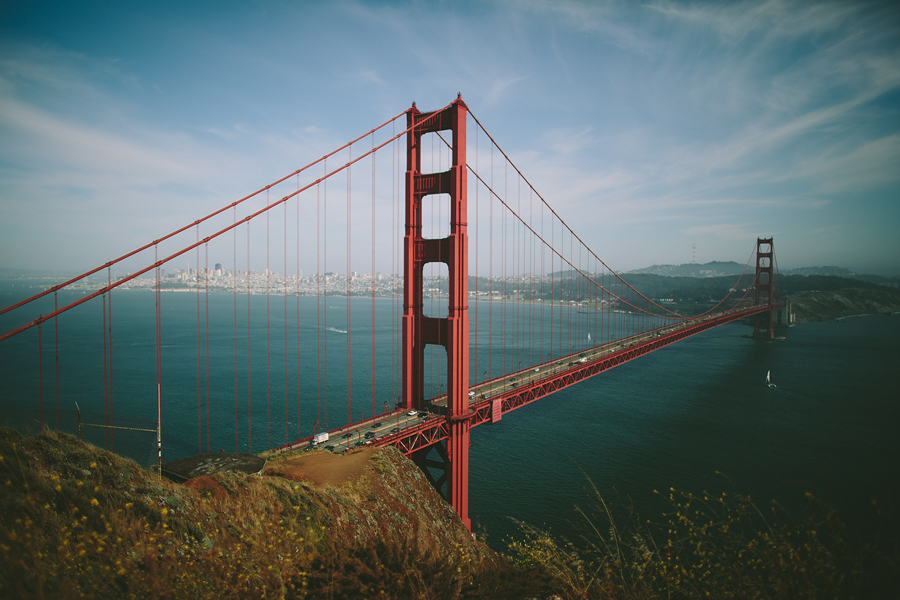 Crystal + Michael    Golden Gate Park Wedding    San Francisco, CA