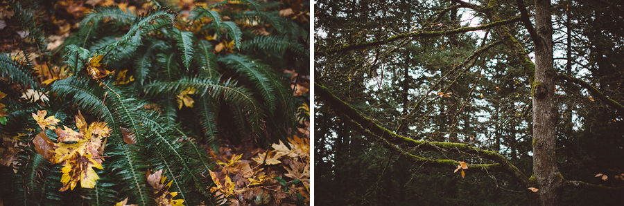 Mt-Tabor-Family-Photos-3.jpg