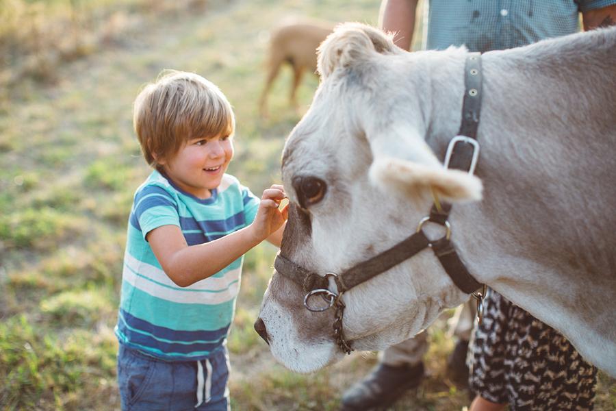Raw-Dairy-Photographs-044.JPG
