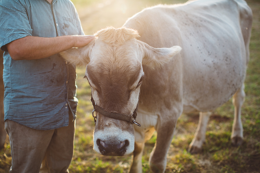 Raw-Dairy-Photographs-048.JPG