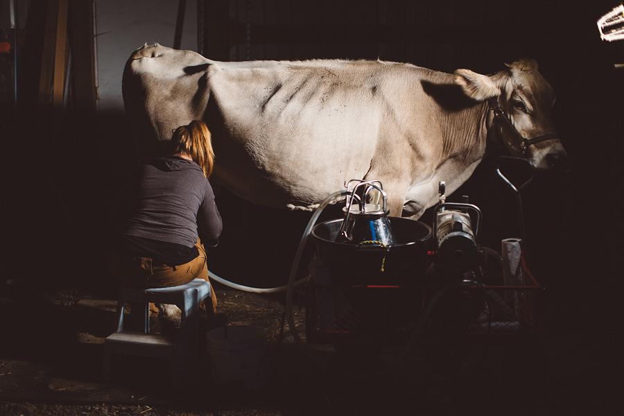 Raw-Dairy-Photographs-077.JPG