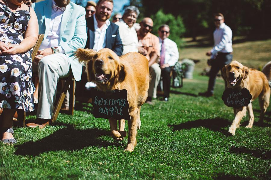 Boise-Wedding-Photographer-57.jpg