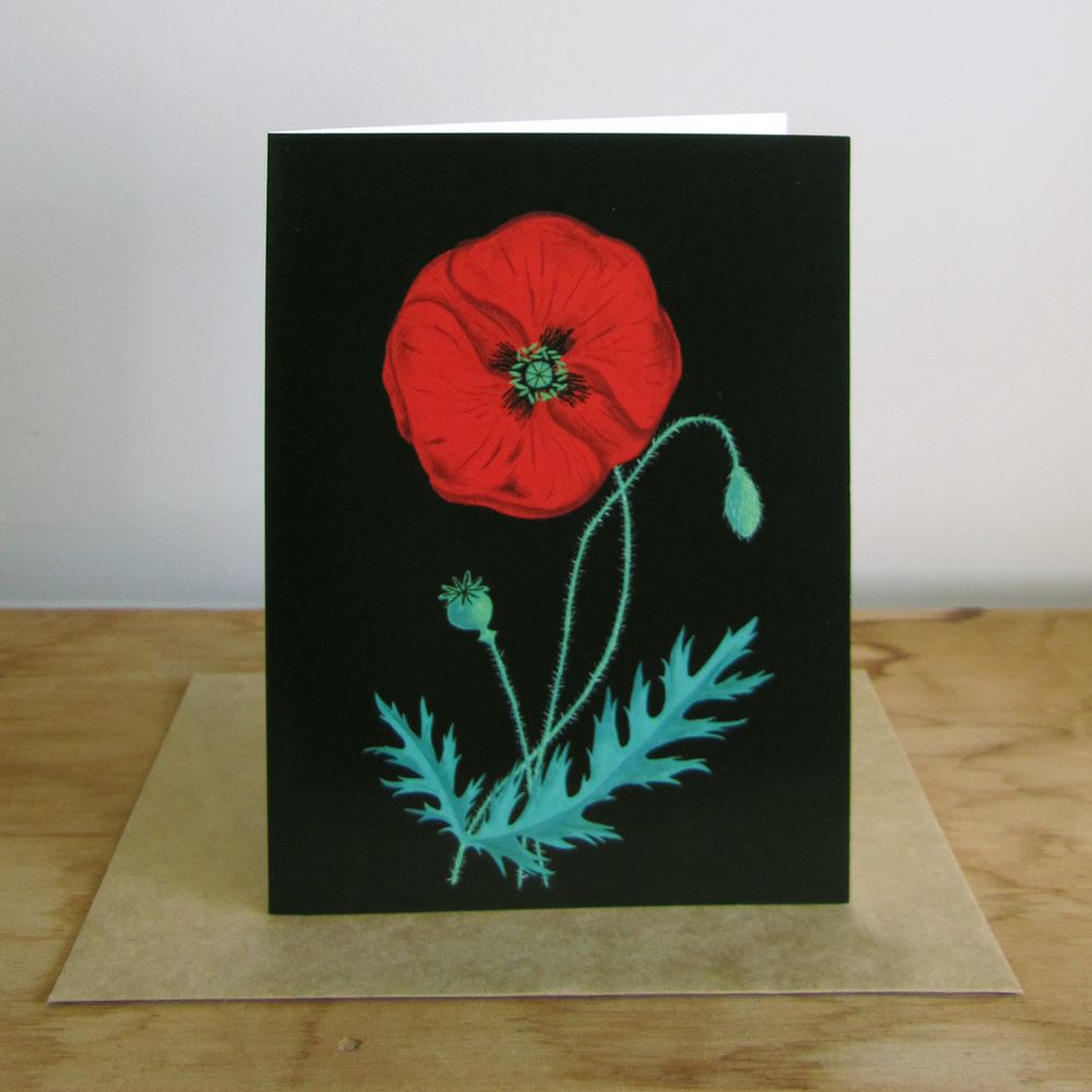 poppy-card-photo