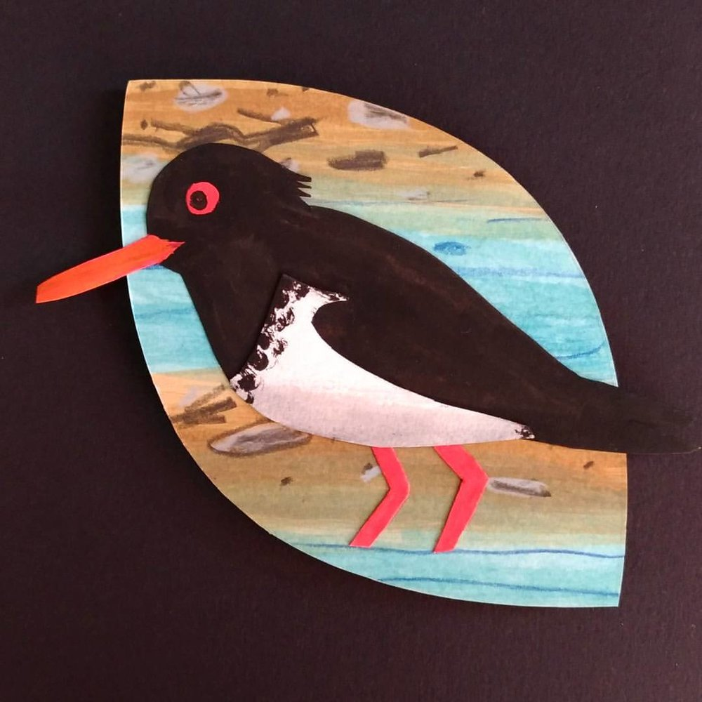 Tōrea/Pied Oystercatcher - painted paper collage. Made for Seed Gallery's A New Leaf exhibition