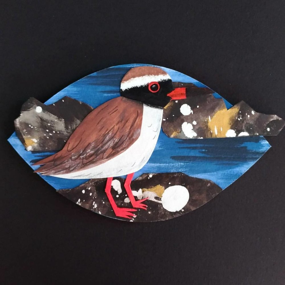 Tuturuatu/Shore plover - painted paper collage. Made for Seed Gallery's A New Leaf exhibition