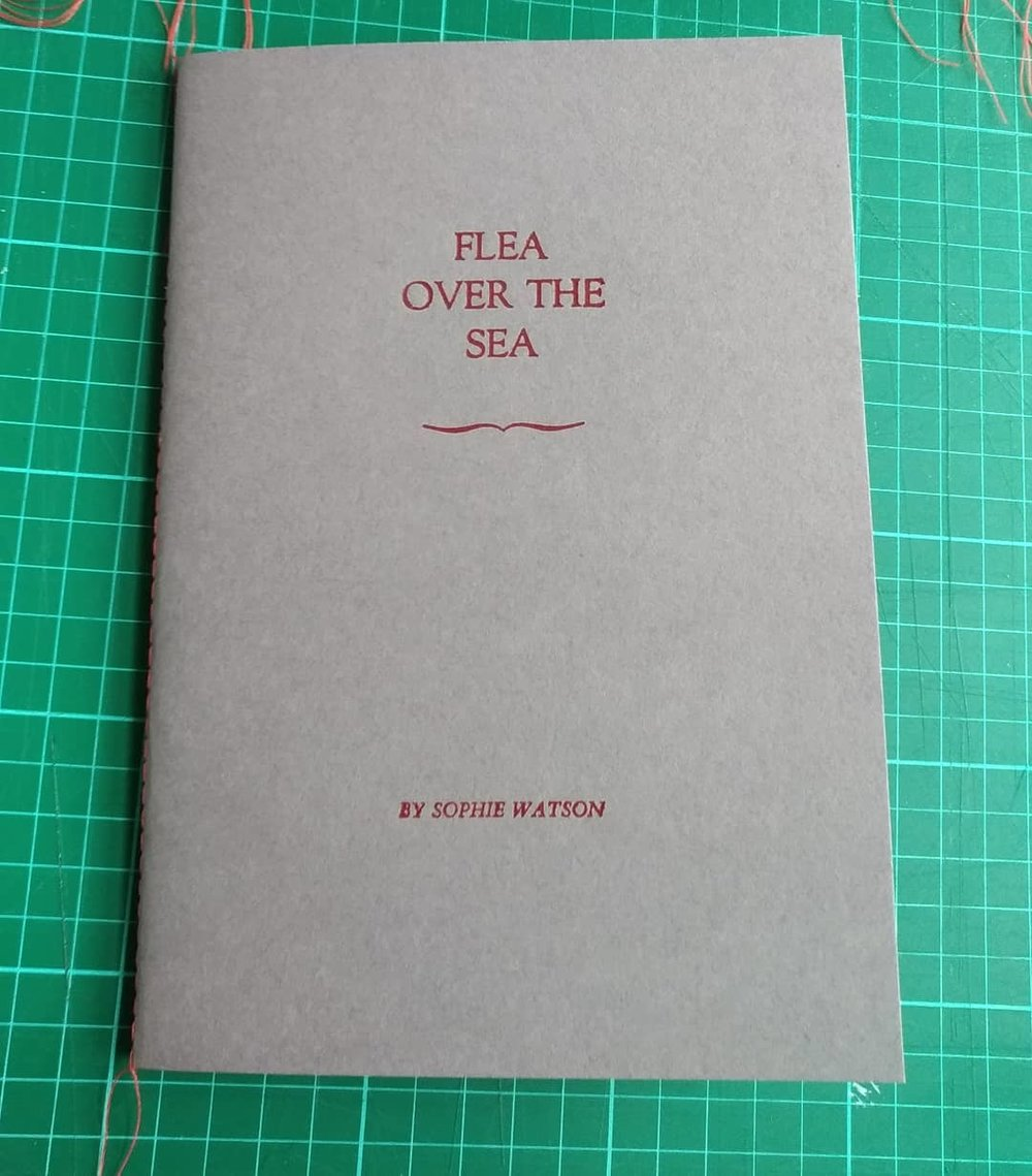 Letterpress printed cover of Flea Over The Sea