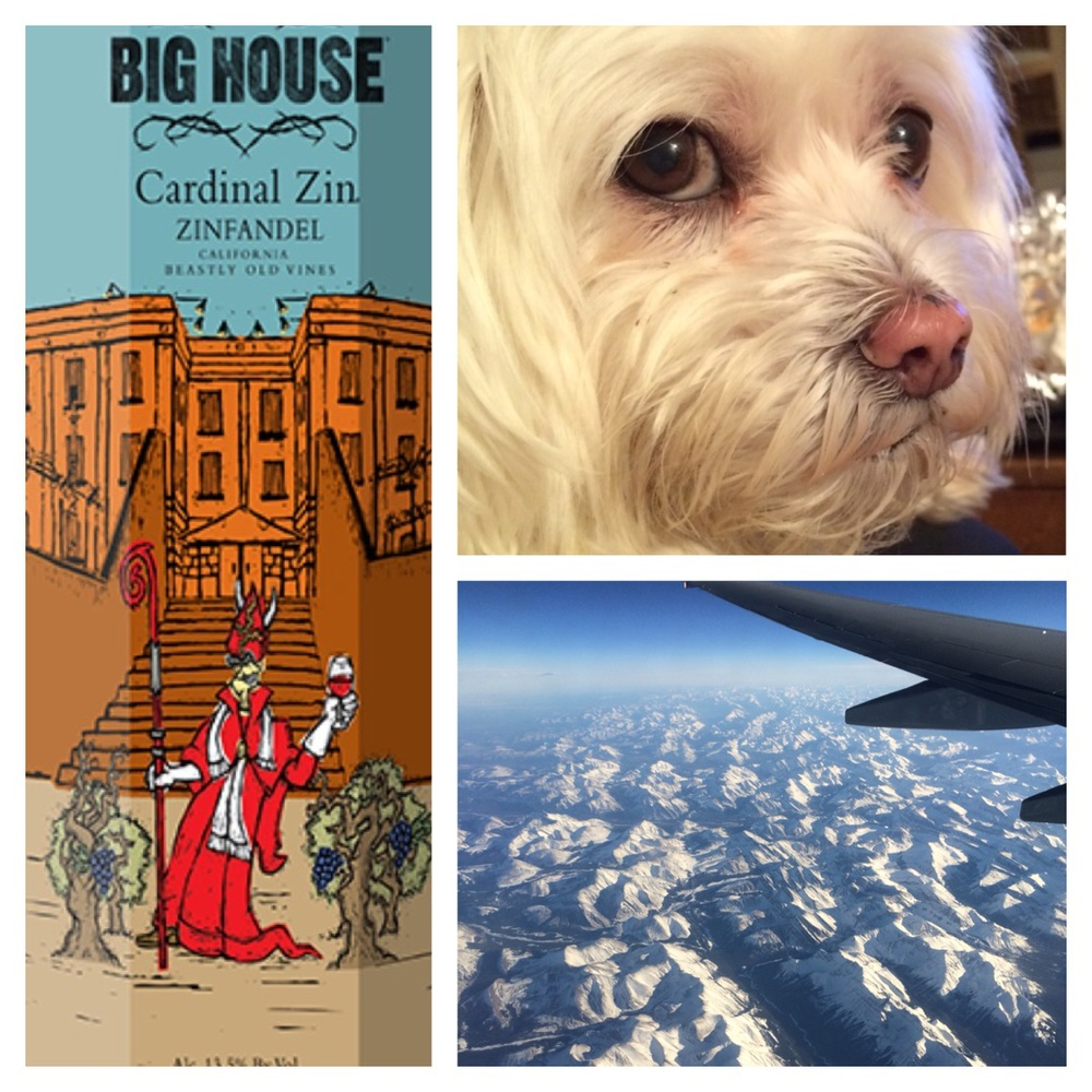 Cardinal Zin - My latest boxed vino addiction // Maslow - He's old and crusty, but he's still the best // Flying over the Rockies
