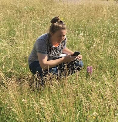 Field Surveyor