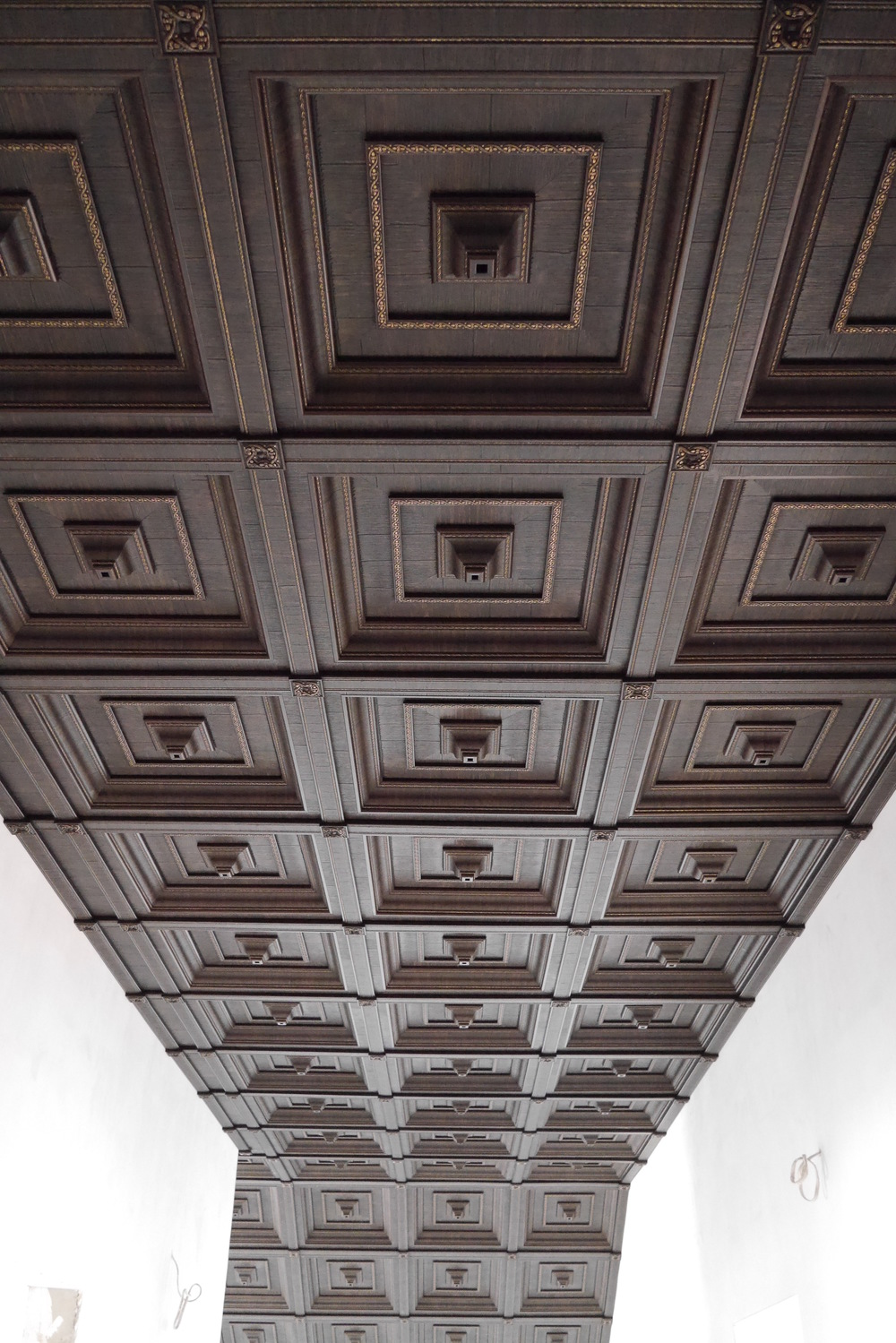 Кессонный потолок.JPG