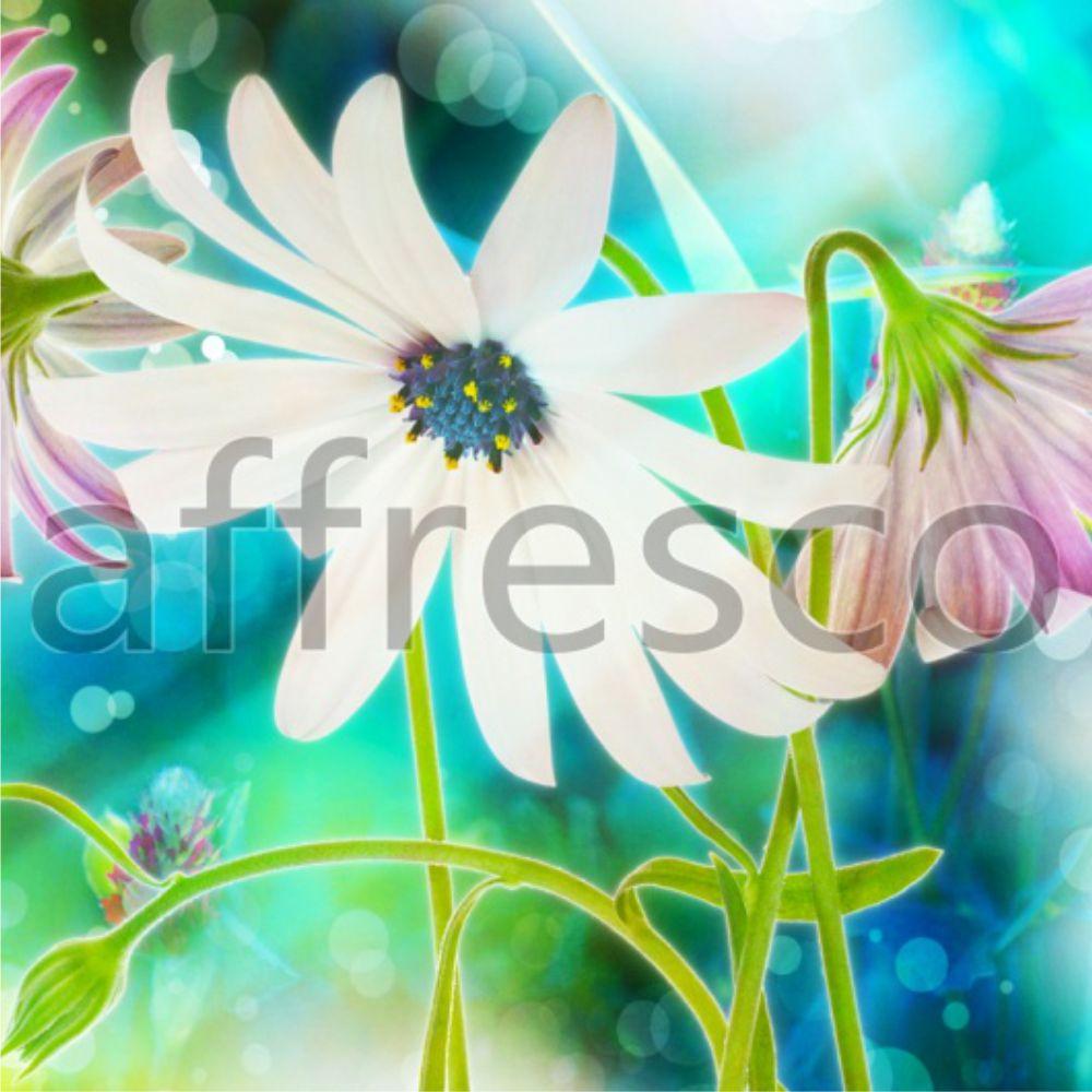 фреска_3.jpg