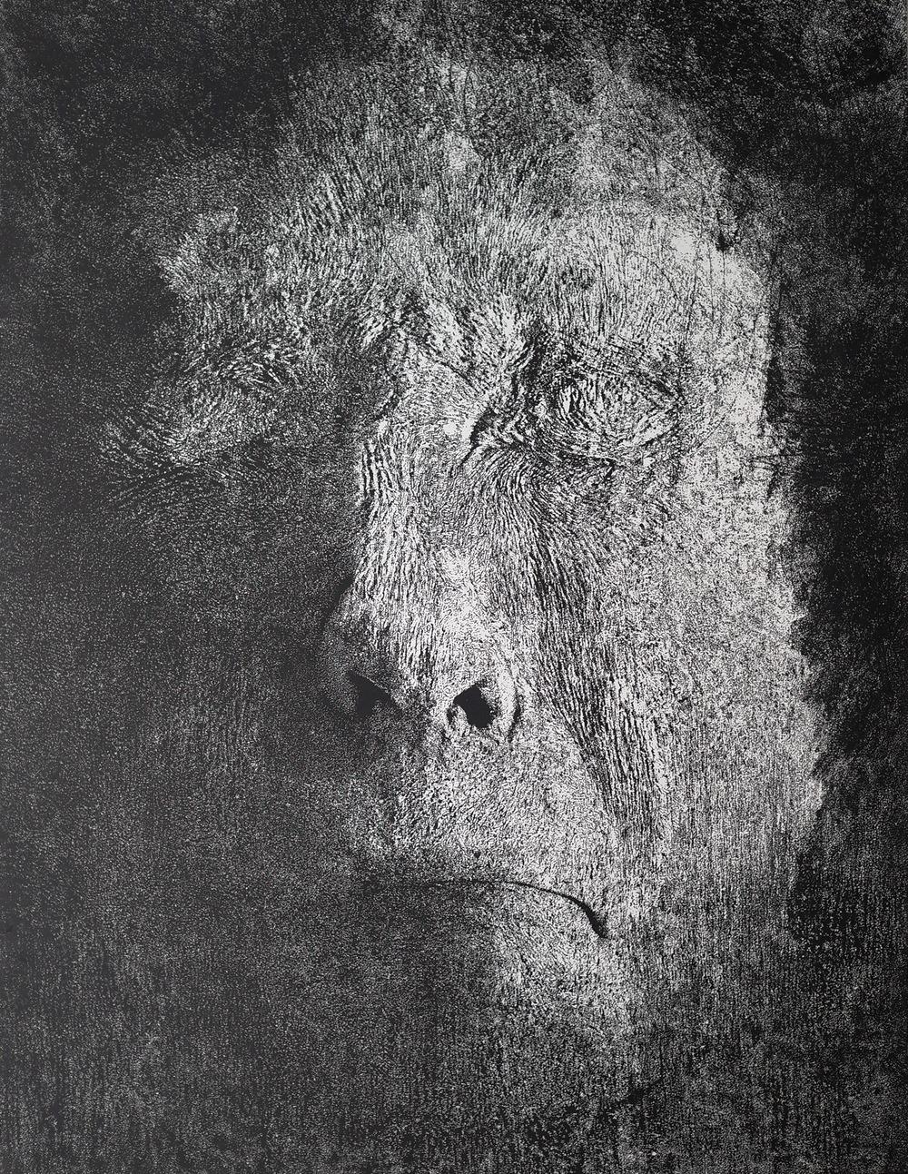 雨果 /Elter Egon           100cm x 78cm