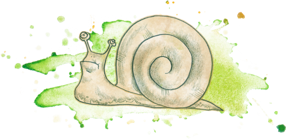 slimy snail
