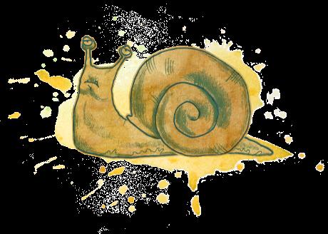 TAP GG Extras SnailsSketch Snail003small v001.png