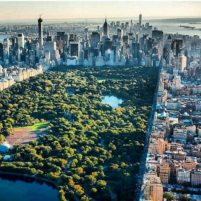 Photo Credit: @nyonair and Anthony Quintano