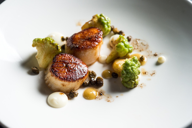 Pearl and Ash scallops, romanesco, capers, burnt butter.jpg