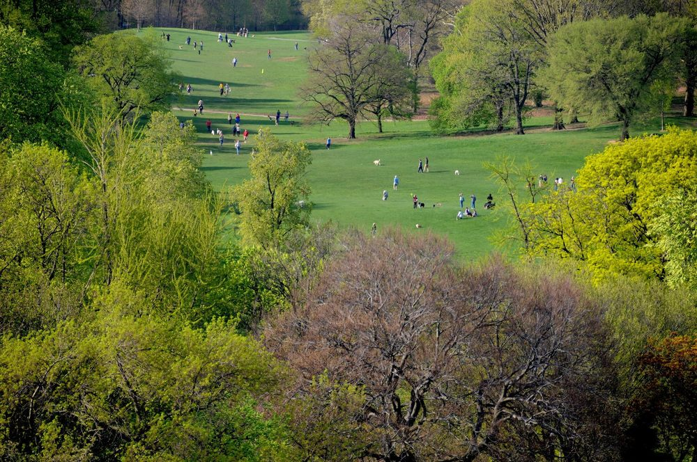 Prospect Park By Elizabeth Keegin Colley.jpg