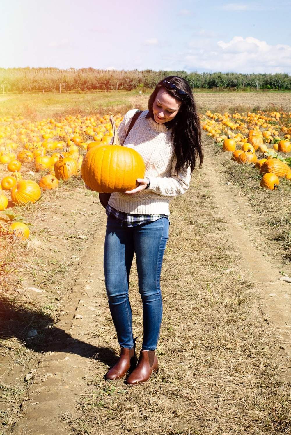 Carly A. Heitlinger Fishkill Farms Hudson Valley New York NYC Hush Hush Tips Pumpkin Picking.jpg