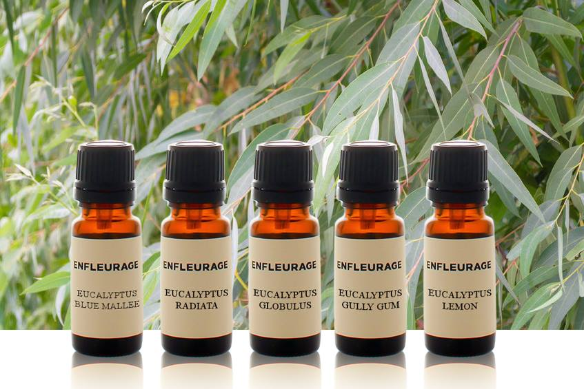 Enfleurage Greenwich Village Manhattan New York Essential Oils17.jpg