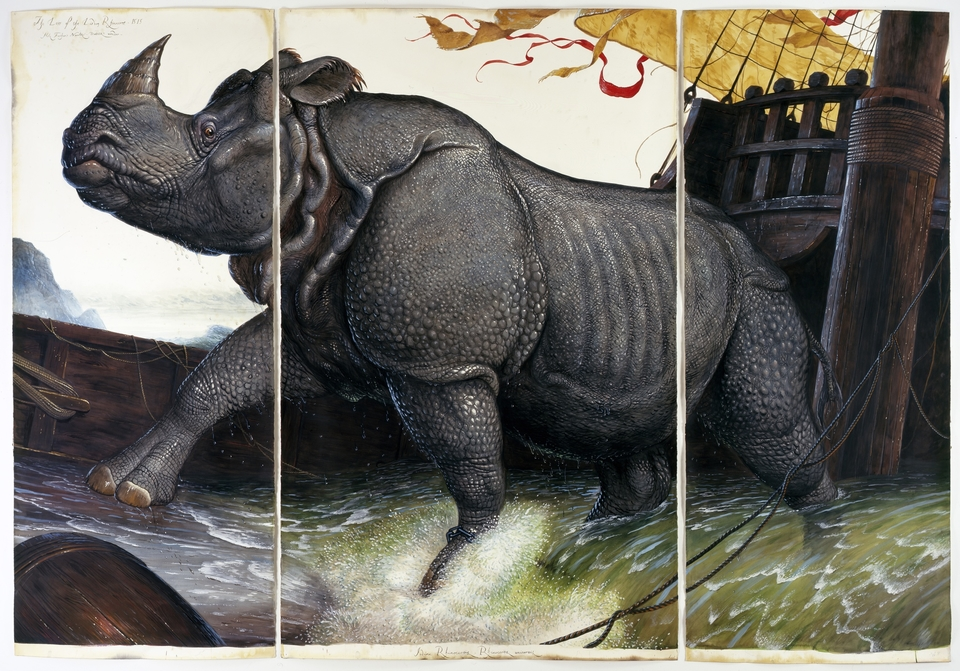 Walton Ford Loss of the Lisbon Rhinoceros, 2008 watercolor, gouache, pencil, and ink on paper at Paul Kasmin Gallery