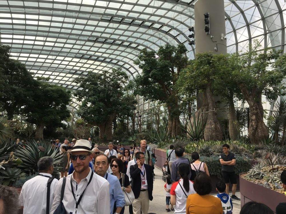singapore-02.JPG