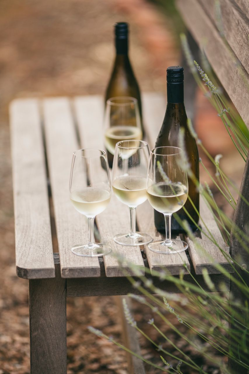 A selection of our whites. Photo Jennifer Sando.