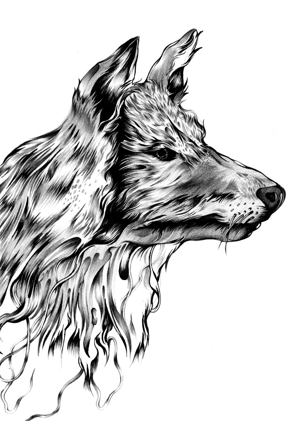 The Wolf_Frame1.jpg