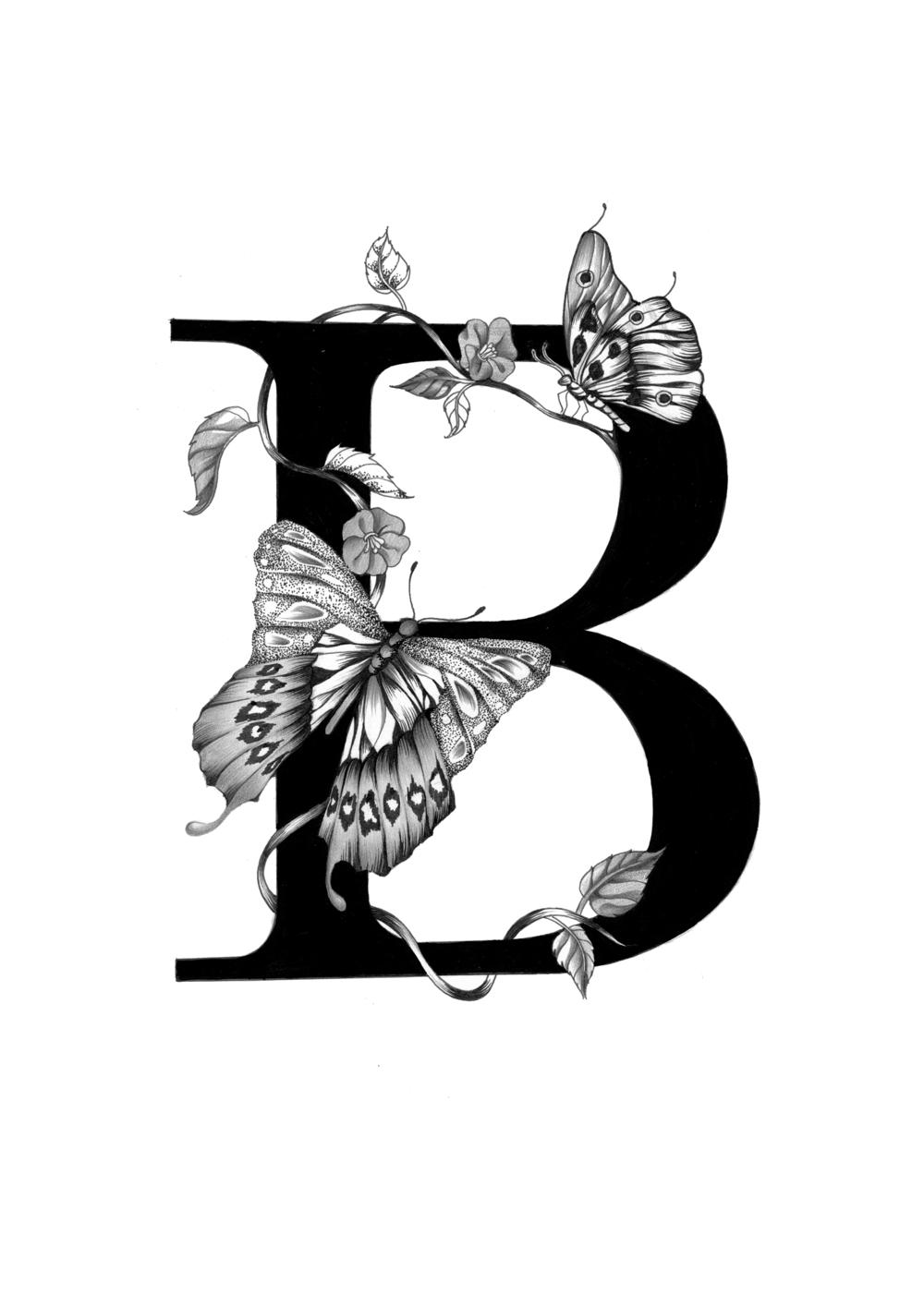 300 dpi-B Butterfly.jpg