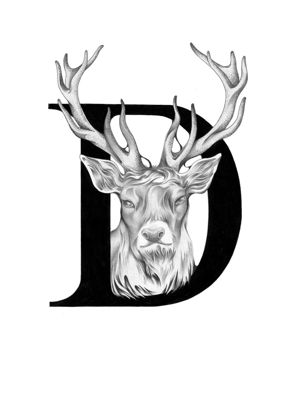 300 dpi-D Deer.jpg